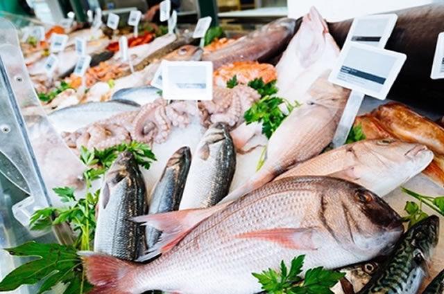 Peixaria, peixes atacado Sorocaba
