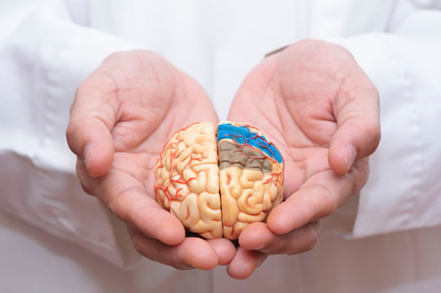 Neuropsicologia Sorocaba
